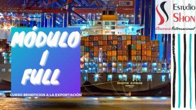 exportaciones argentina